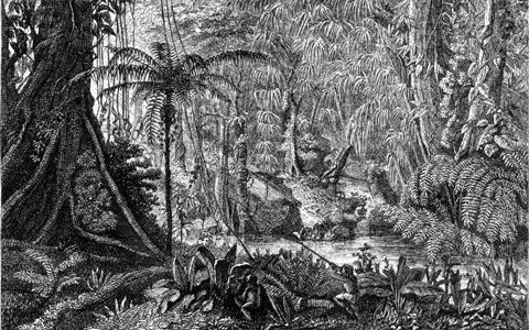 Imagem do livro The naturalist on the River Amazons, de Henry Walter Bates